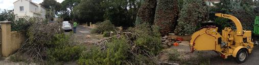 Elagage abattage d'arbres - boyage des végétaux - Montpellier - Jardins Méditerranéens